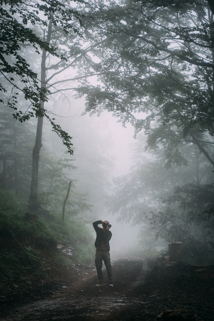 photography gear for photographing fog and mist 1 image