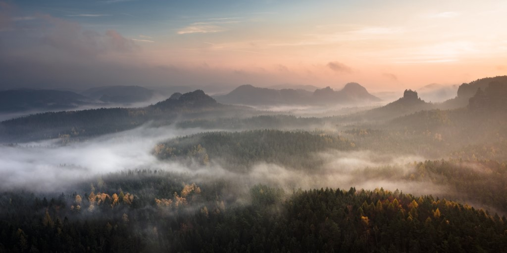 tips for photographing mist 3 image