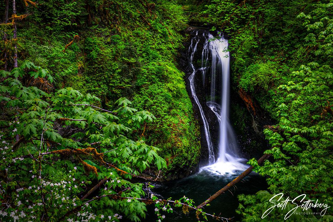 15 Incredible Oregon Waterfalls You Need to See image