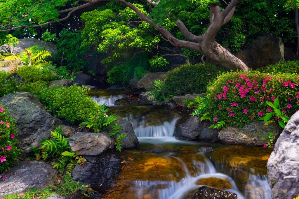 landscape photography 1 image