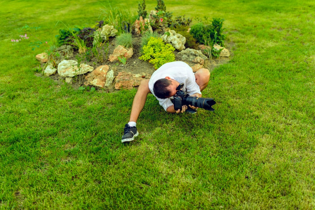 beginner photography tips 3 image