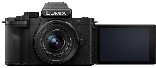 Panasonic Lumix DC G100 Video Performance image