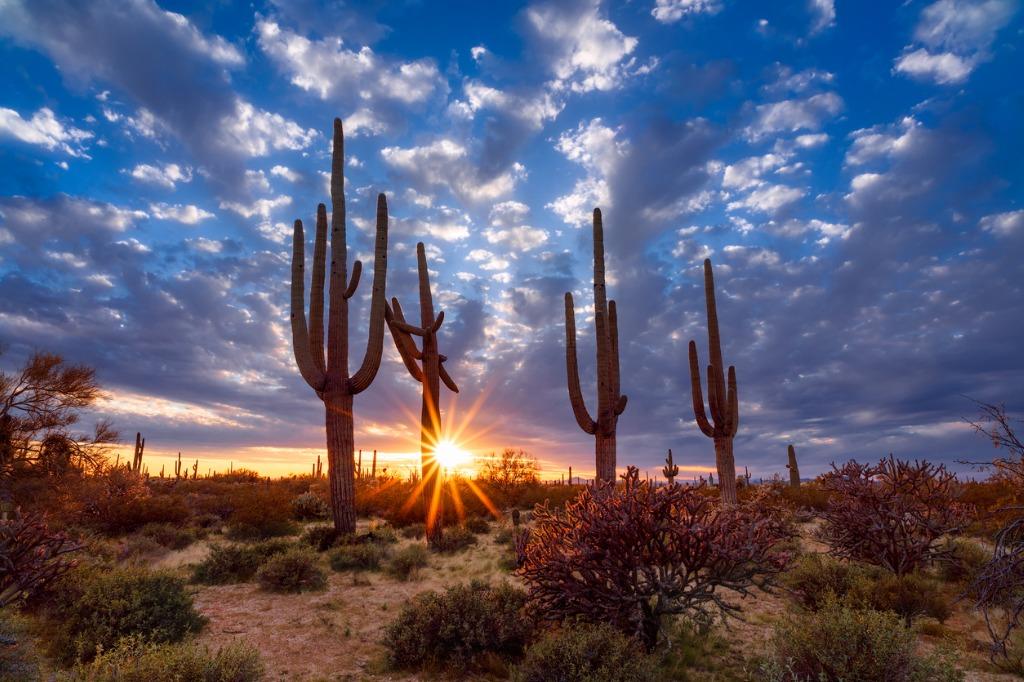 landscape photography 5 image