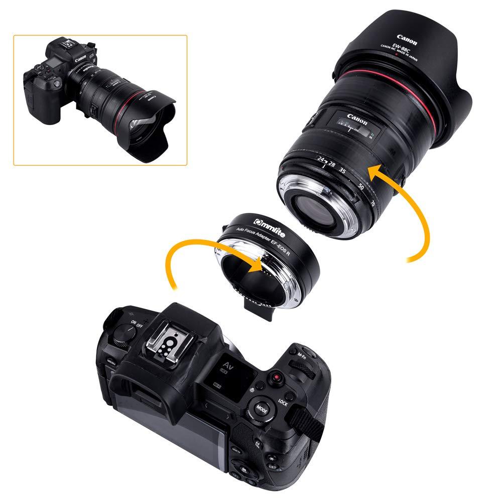 use ef lenses on eos r 3 image
