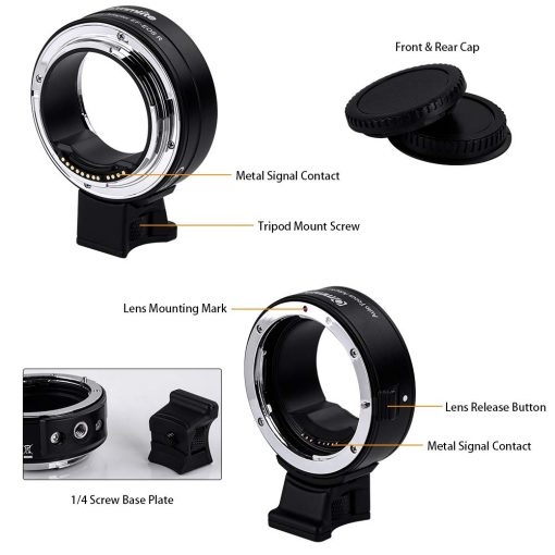 use ef lenses on eos r 5 image