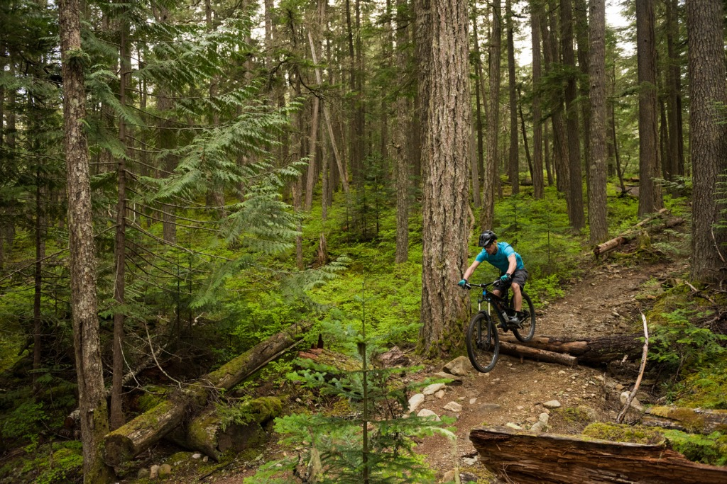 landscapes to see by bike 3 image