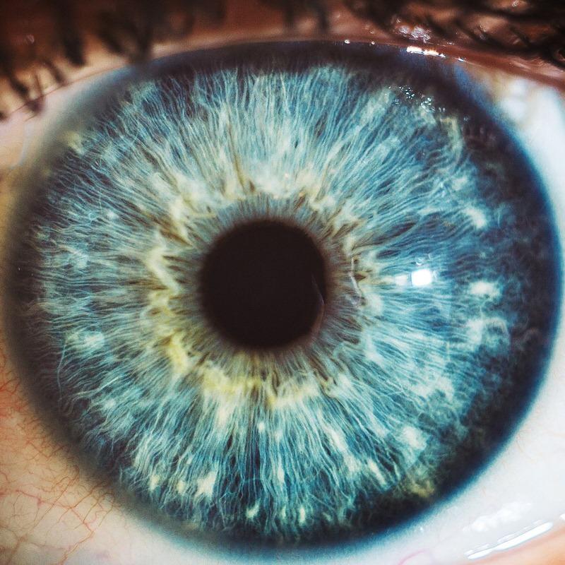 macro lens guide 8 image
