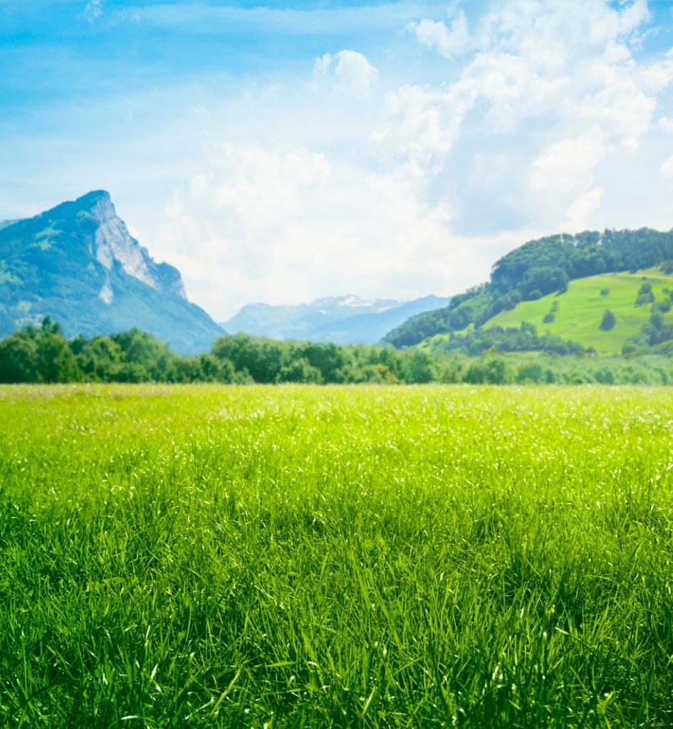 spring landscape photography tips image