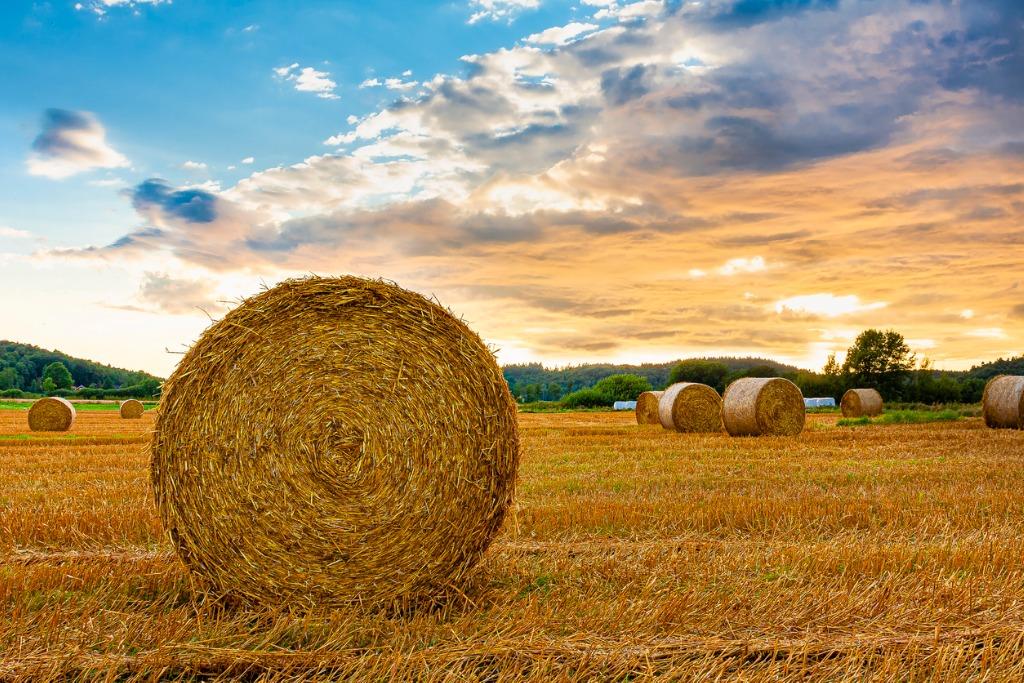 better landscape photos image