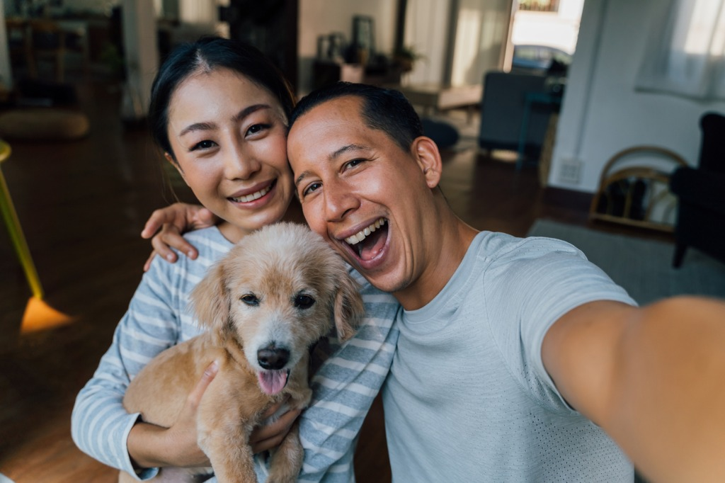 how to photograph pets image
