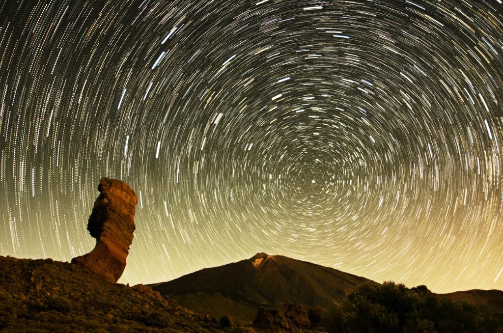 night nature photography image