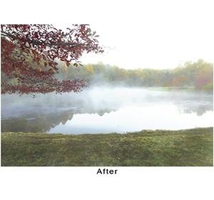 600W-Fog-After-c-William-Folsom image