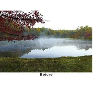 600W-Fog-Before-c-William-Folsom image