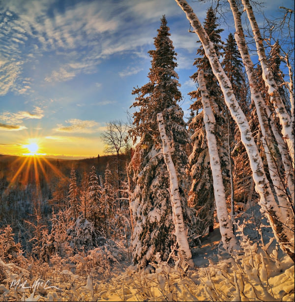 cold-but-beautiful-sunrise-122909-a sg image