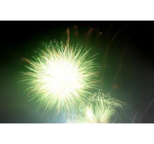 fireworks3 image