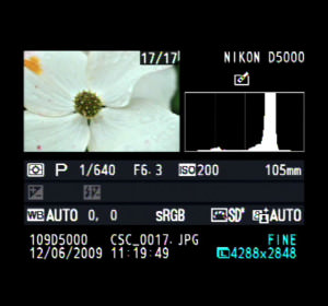 histogram-main-001 image