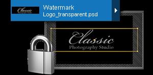 watermark image