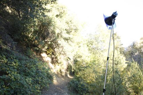 2  MG 2704 image