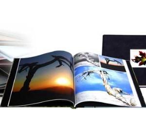 viovio book montage image
