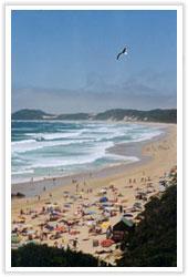 beachd0706.jpg image