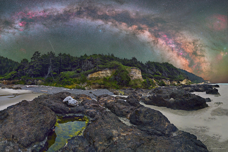 Oregon Coastline with Stars, Shooting Star and Star Fish.