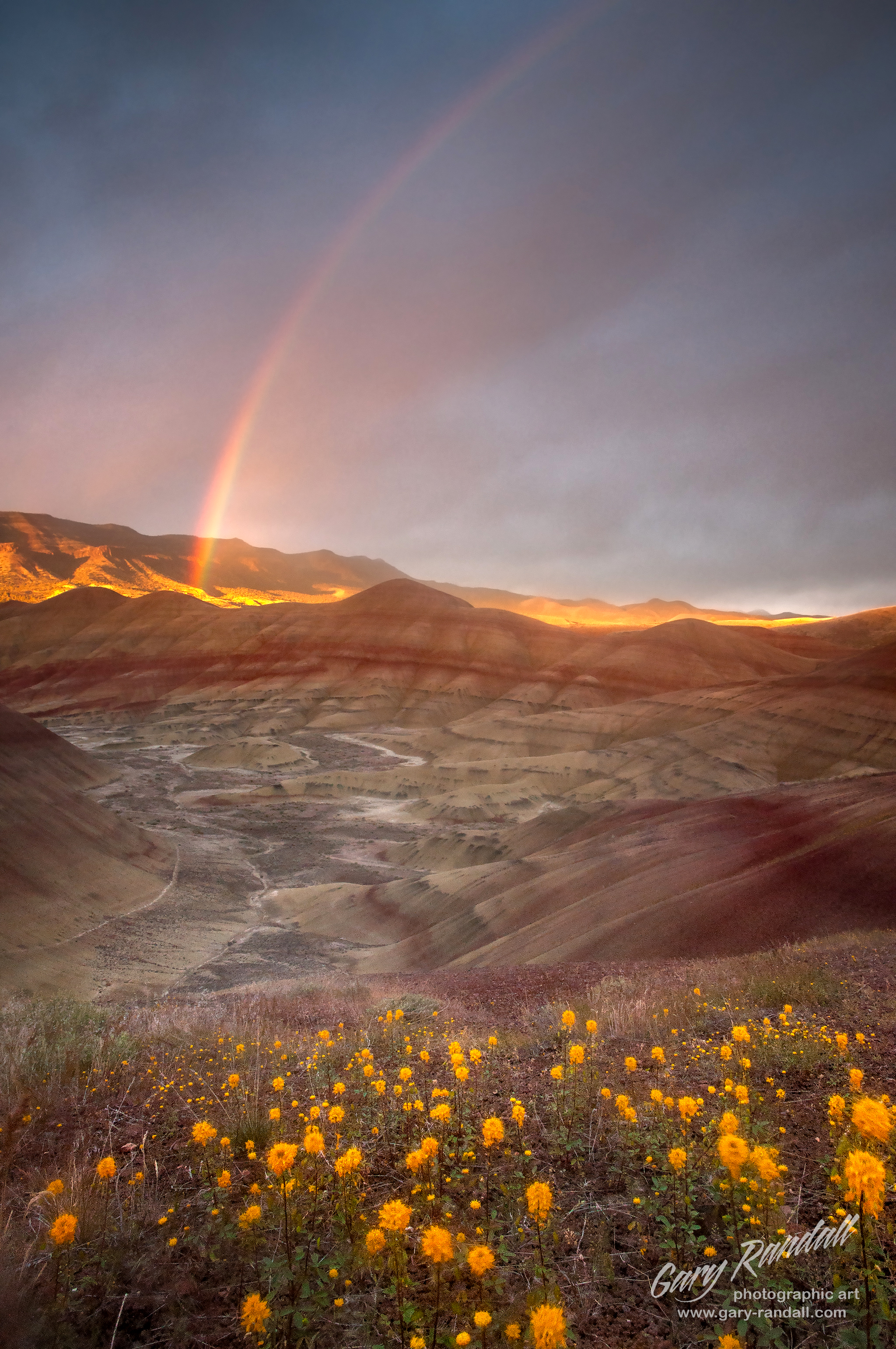 The Painted Hills Oregon