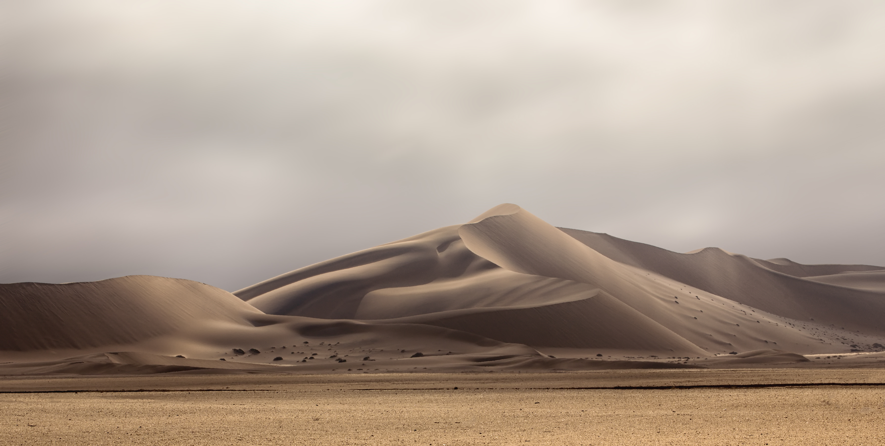 Winter Afternoon in the Namib