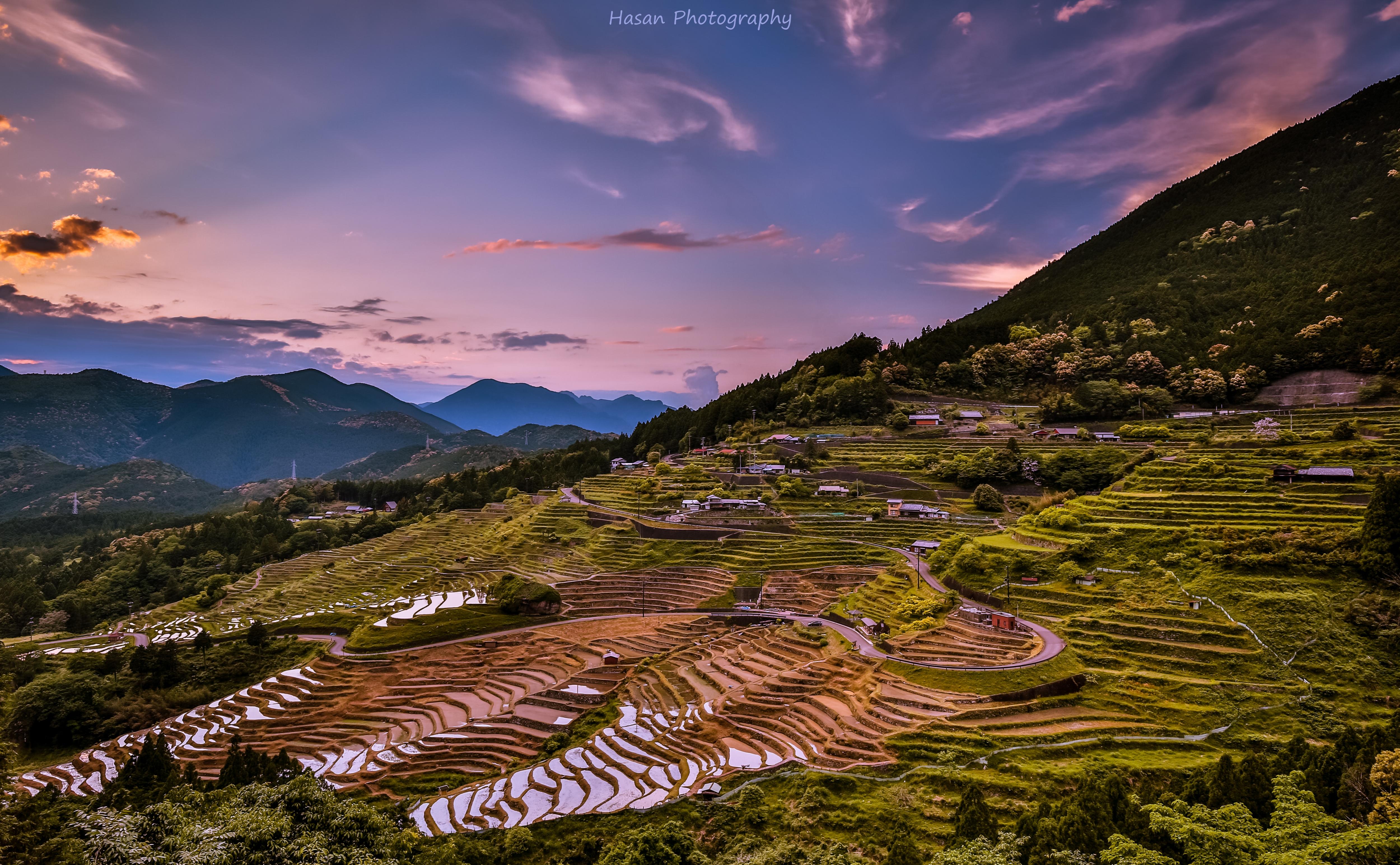 Japanese Rice Terrace!!