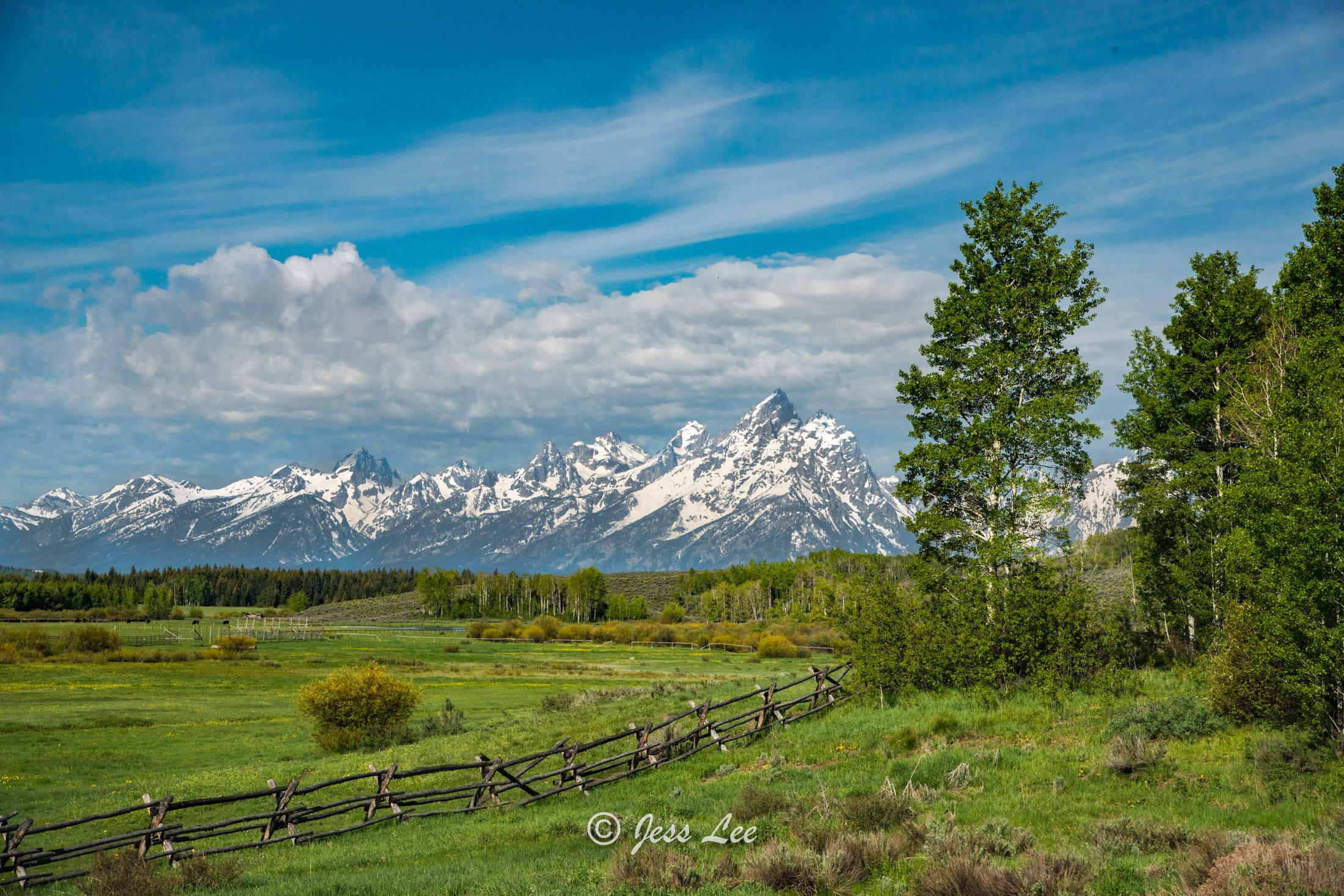 Teton view fence-6938