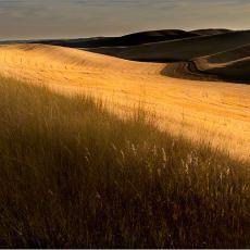 Palouse, Echoes of Tuscany