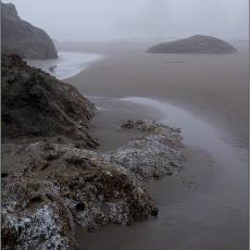Along the Oregon Coast