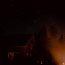 Stary Nights