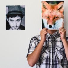 Fox Collins