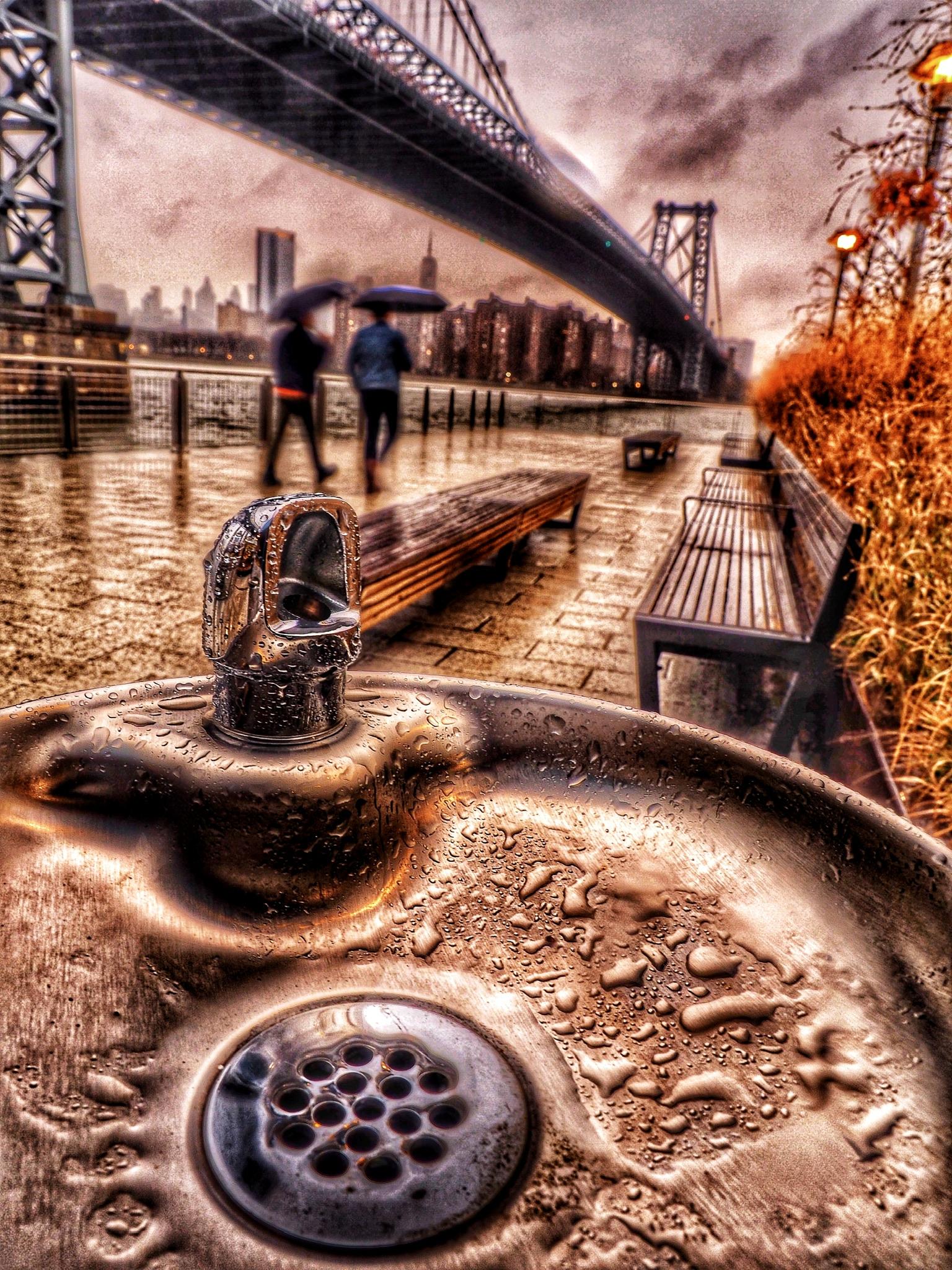 Rainy day in Domino Park, NYC