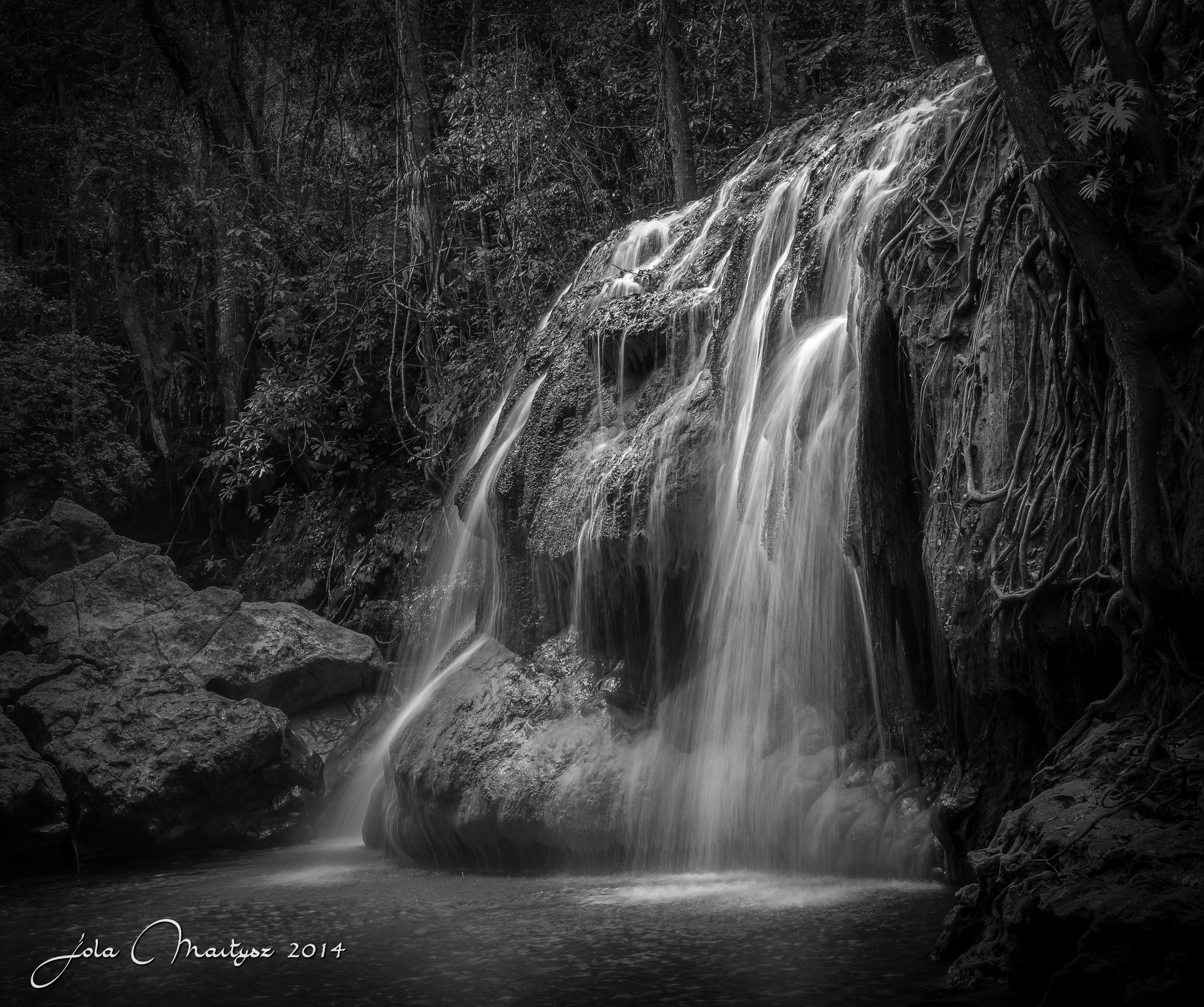 Hidden In The Jungle Of Guatemala (B/W)