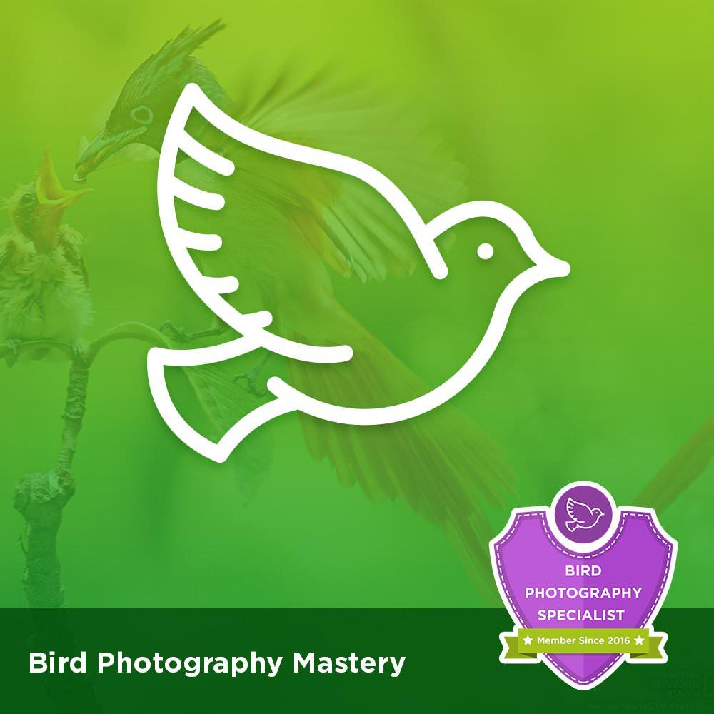 Bird Photography Mastery Course