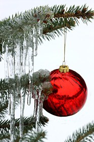 Christmas Photography image