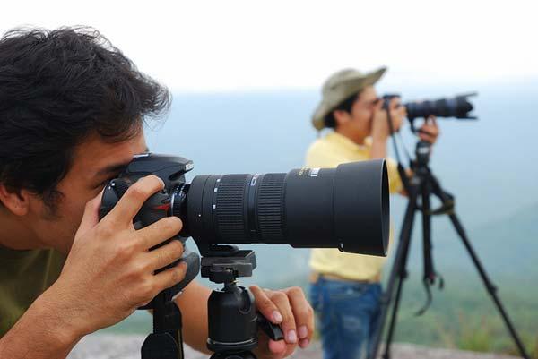 freelance2 image