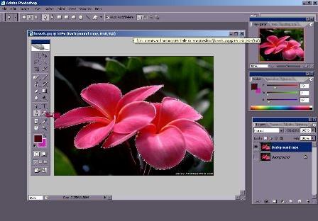 photoshop1 image